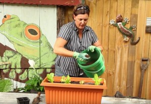 Composting (2)