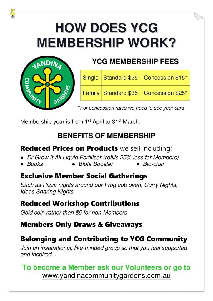 How does YCG Membership Work