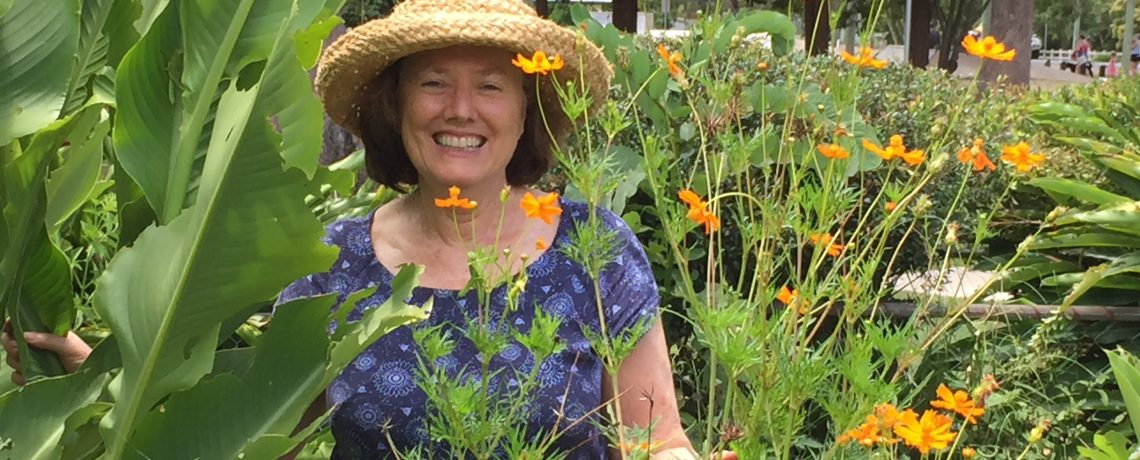 Saturday, 3 March, 9am – Guided Garden Tour with Margaret Hamlyn
