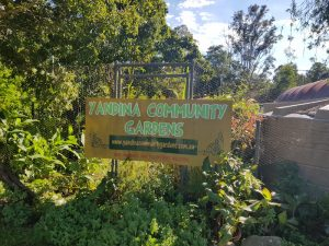 Yandina Community Gardens improving visibility