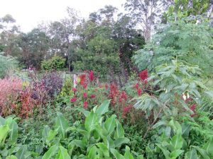 Open garden at Traveston property
