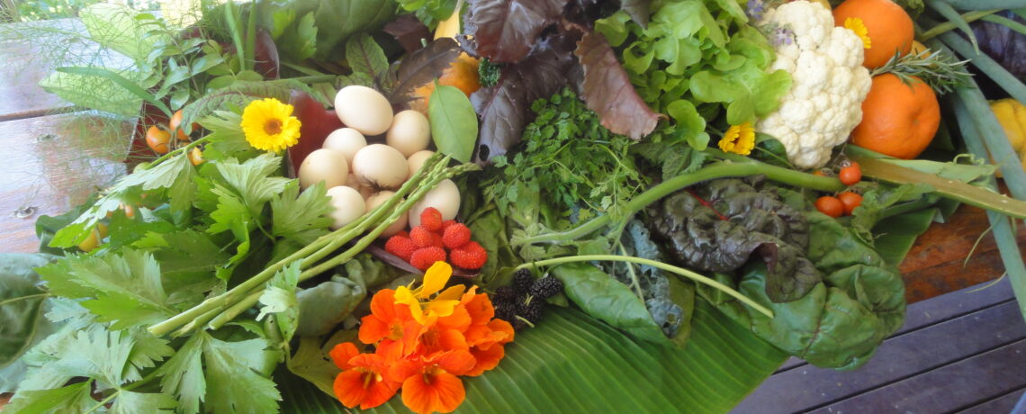 Saturday 27th March 2021, 3 – 5pm, Time to grow your own food and wellness with Leonie Shanahan